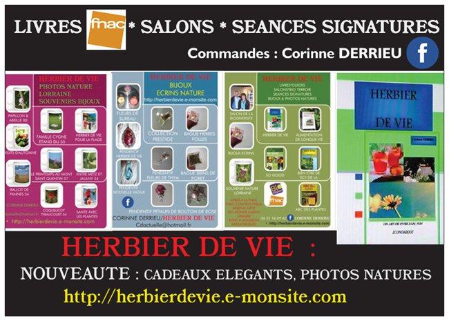 HERBIER DE VIE PRESENTATION