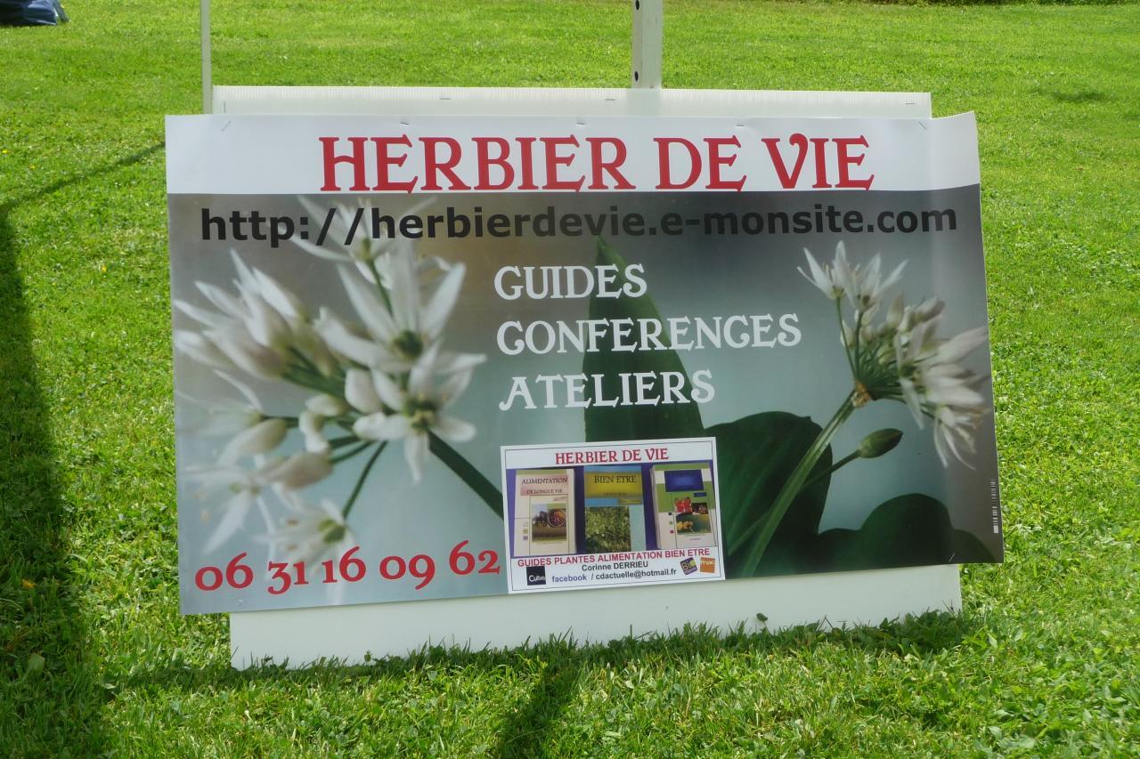 ATELIERS CORINNE DERRIEU HERBIER DE VIE  AUSSI EN EXTERIEUR