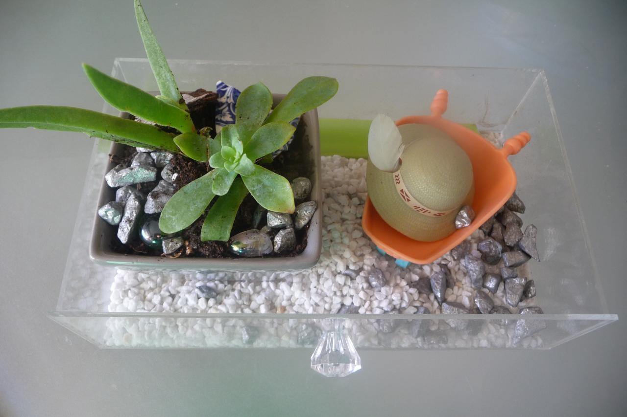déco de table mini jardin